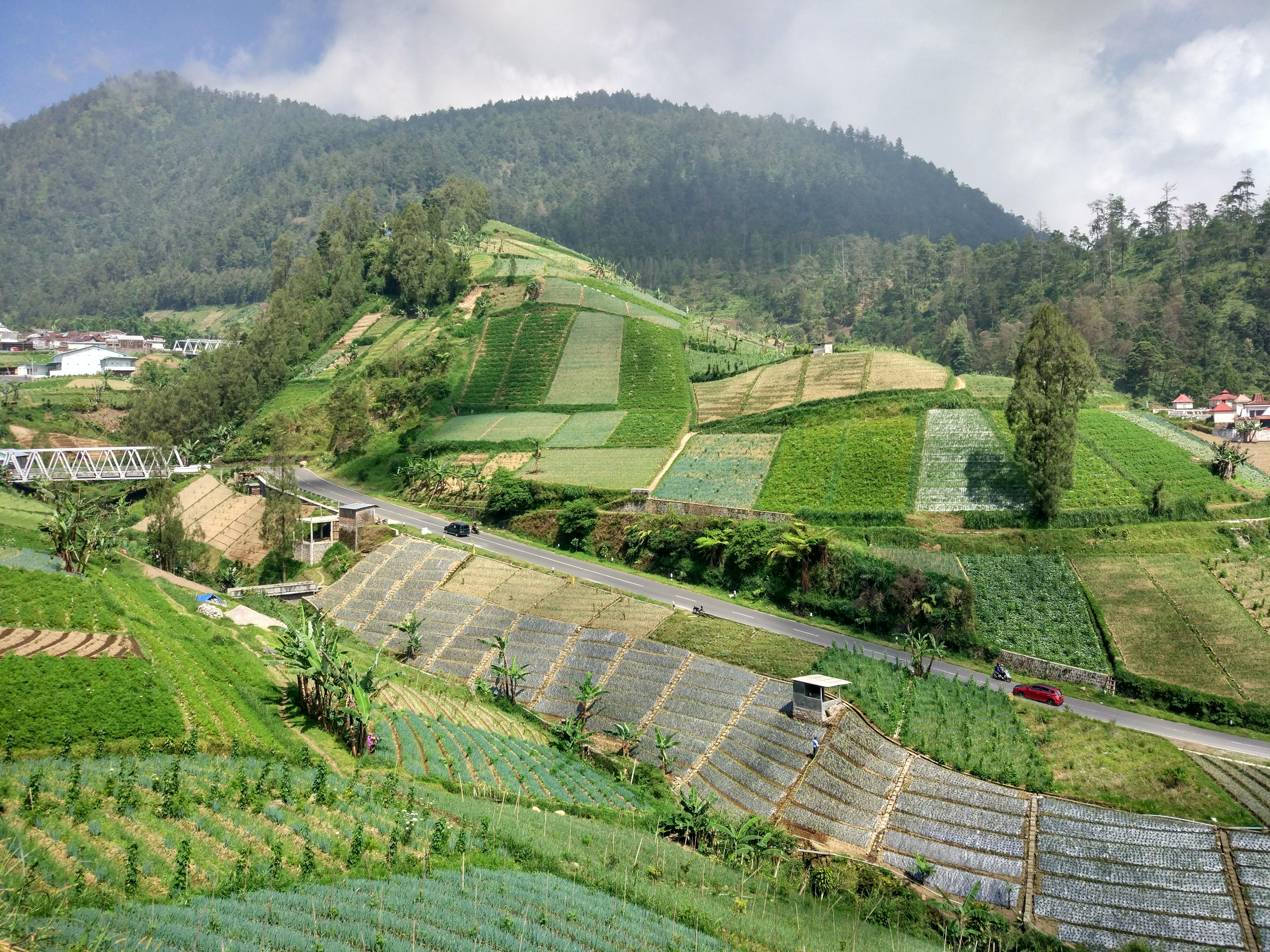 3. Etappe: Indonesien